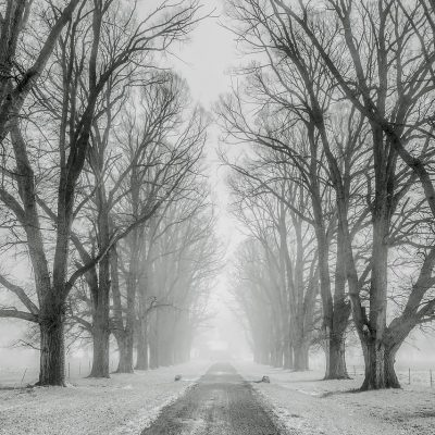 冬に流行する風邪
